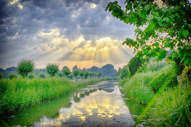 Sun breaks through clouds and reflects off of a creek in a verdant landscape