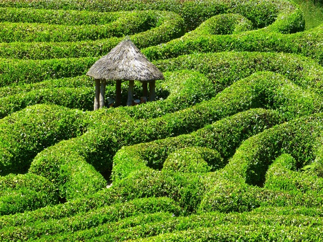A hedge labyrinth with a rustic thatched hut at the center