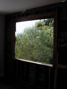 Looking out at green trees from a dark room