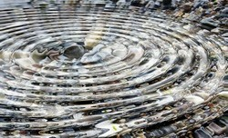A stone hits the surface of a pond and sends out a circle of ripples