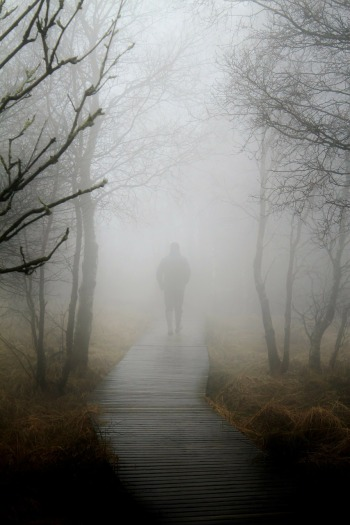A figure walks away from the camera into the fog on a wooden path through trees