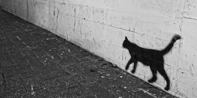 The silhouette of a black cat painted on a wall along a paved alleyway